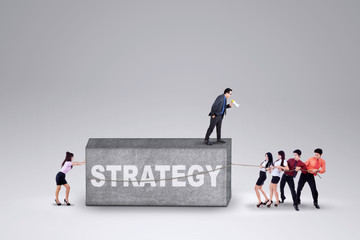 Business group and a strategy