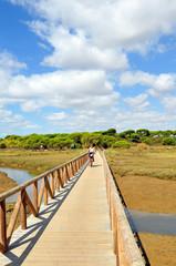 Marismas del Río Piedras, El Rompido, Huelva, España