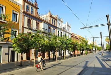 Calle San Fernando, Sevilla, Andalucía, España