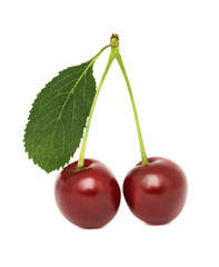 Two ripe cherry with green leaf (isolated)