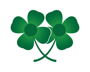 Twin Clover Leaf
