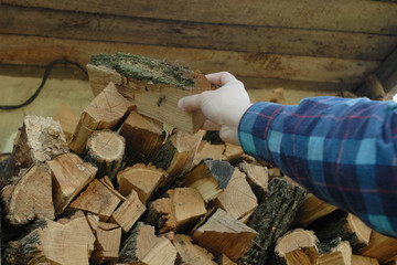 man's han putting log into the stack of firewoods