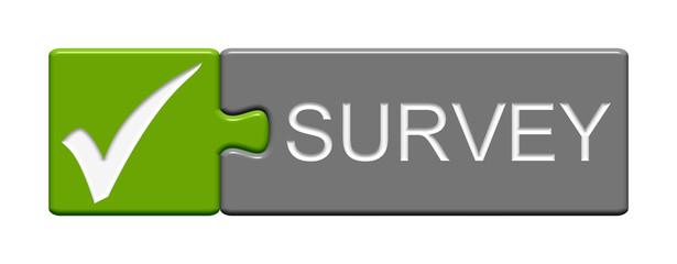 Puzzle Button - Survey