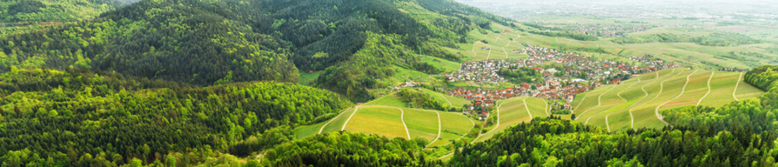 Panoramic view of the black forest and typical village. Germany.