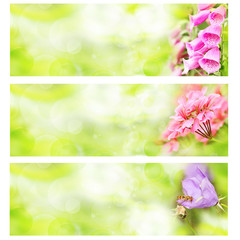 banner of summer flowers