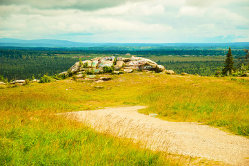 Пейзаж с камнем на фоне тайги