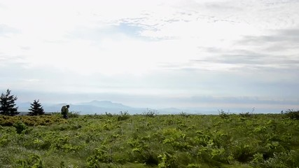 Female hiker hikes along the horizon at a distance