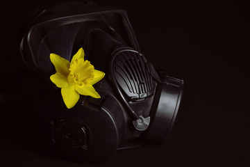 Black gas mask with yellow daffodil isolated on black