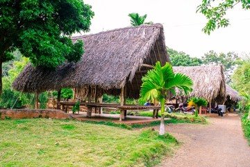 paleolithic thatched huts