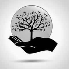 albero nella mano