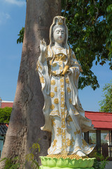 the white Guan Yin statue under sunlight