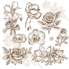 Hand drawing set of beautiful flowers