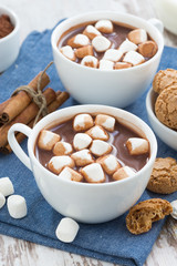 cup of cocoa with marshmallows, vertical