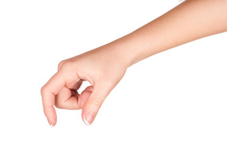 female hand holding something on a white background