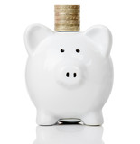 piggy bank with coins on head