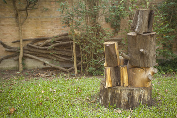 Piled stump seats in garden or park