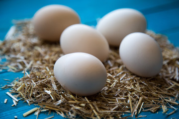 taze yumurtalar