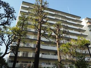 高層アパート