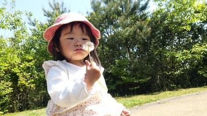 タンポポの綿毛を吹く少女