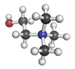 Choline essential nutrient molecule.