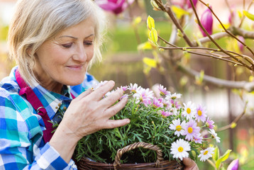 Beautiful senior woman planting flowers in her garden