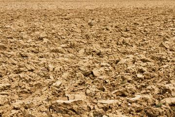 Parcela de tierra o terreno agricola arado