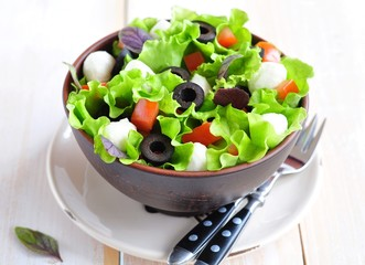 Fresh salad with mozarella cheese, tomatos and olives.