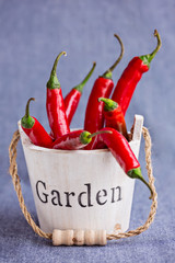 Hot red chili peppers in wooden mini backet with word Garden on