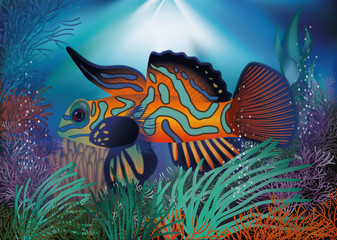 Underwater wallpaper with red tropic fish, vector