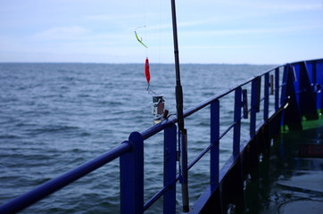 fishing-rod with spinning-wheel