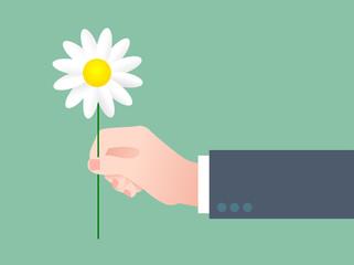 mano, fiore, regalo, amore