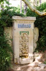 A copy of the Fountain of Bakhchisarai in the Nikitsky botanical