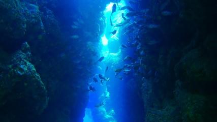 Cave underwater Adventure world