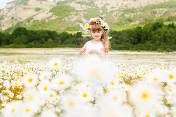 Cute child girl at field of camomiles, summer