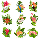Fototapety Tropical birds and flowers pictograms set