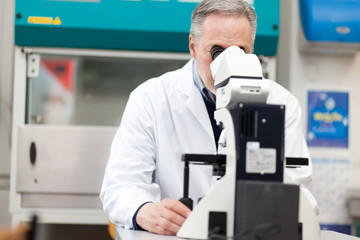 Scientist conducting research looking through microscope
