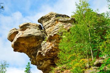 Камень в форме черепахи с открытым ртом на фоне неба и деревьев