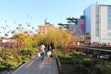 Fototapety New York City / High Line Walkway