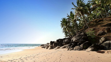 The seashore with stones and palm trees. India. Kerala.