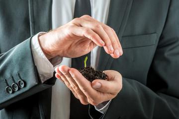 Businessman nurturing a germinating seedling