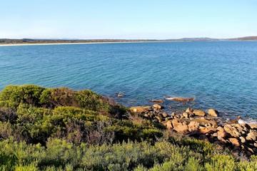 Albany ocean view