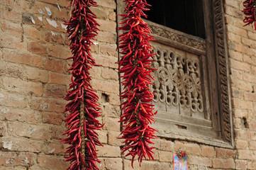 Chiles rojos picantes