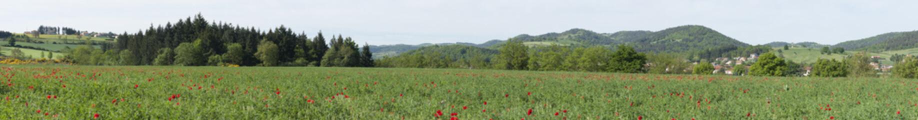 Auvergne panoramique