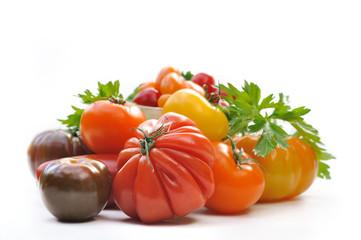 assortiment de tomates sur fond blanc