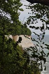 Insel Rügen An der Ostsee Kreidefelsen
