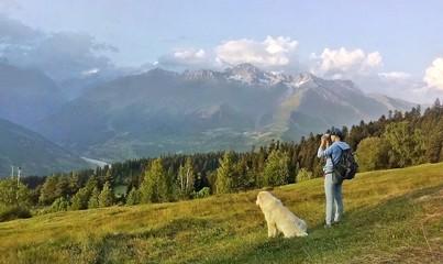 Faithful companion in the mountains