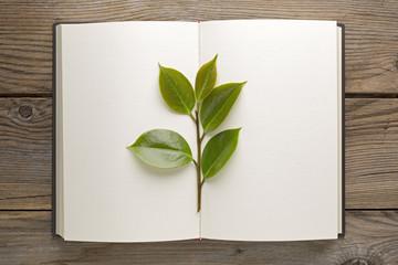 Libro green