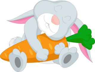 cartoon rabbit hugging carrot