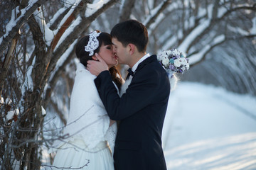 Beautiful winter and wedding.