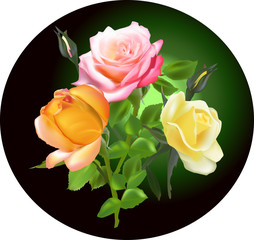 three roses on dark circle background